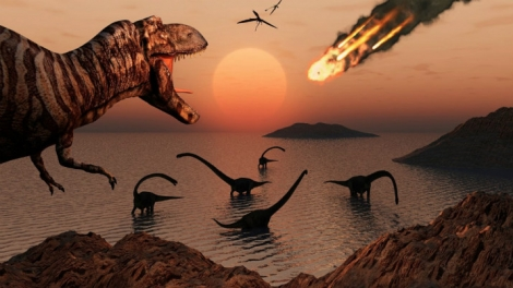 Scientists Find Fossil of Asteroid That Could Have Annihilated the Dinosaurs